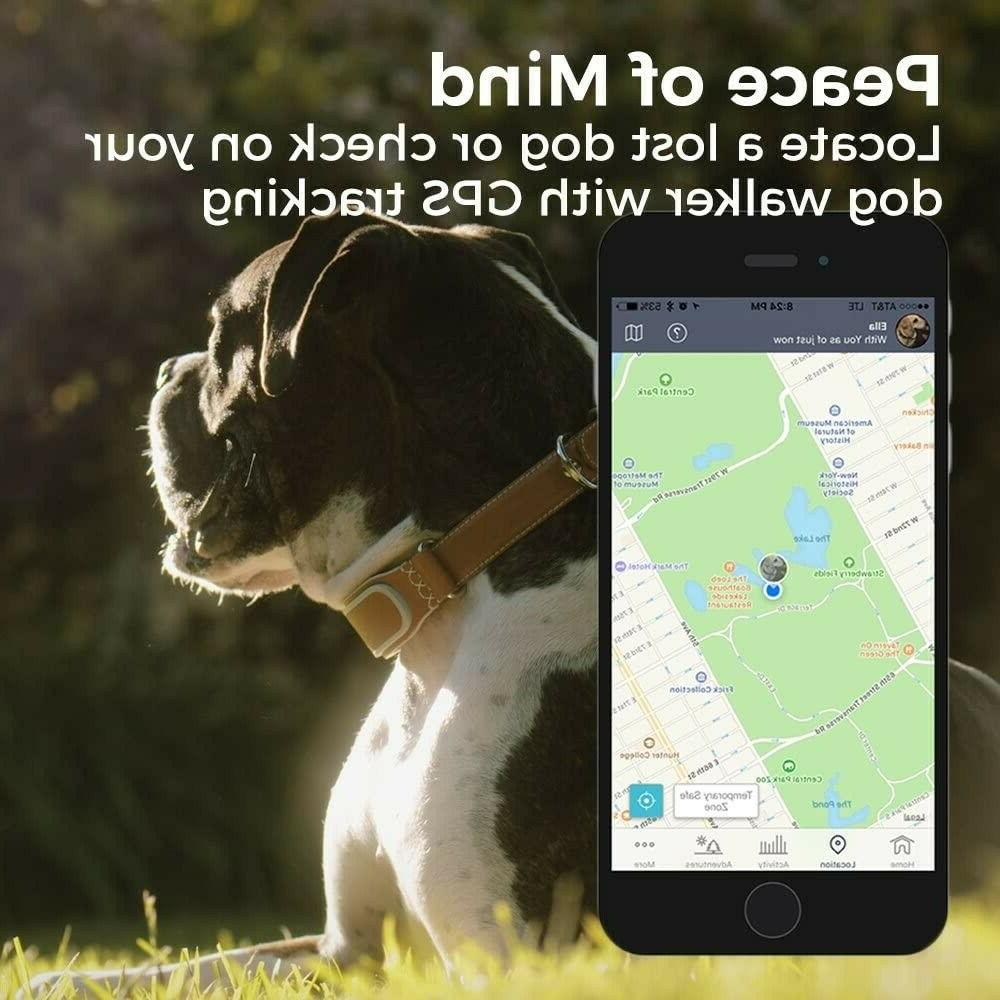 Link Smart Collar with &