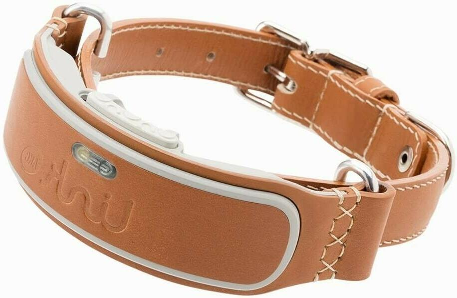 link smart dog collar with gps tracker