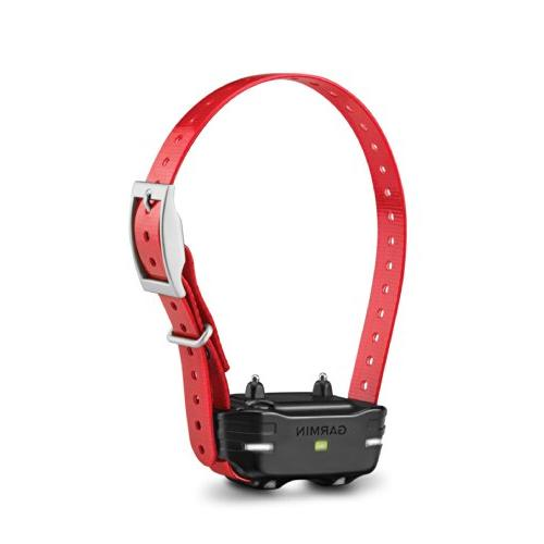 pt10 dog device red collar