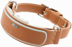 Link AKC Smart Dog Collar with GPS Tracker & Activity Monito